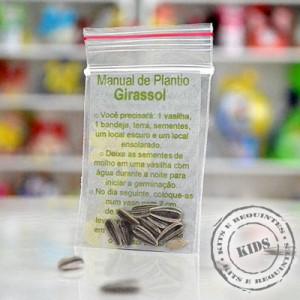 SEMENTES DE GIRASSOL COM INSTRUÇÃO PARA PLANTIO